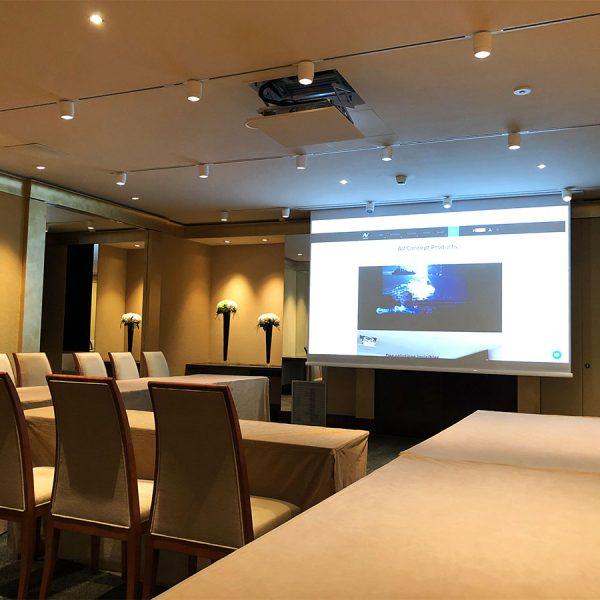 Home Cinema salle réunion